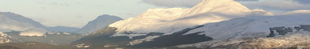 Ben Lomond Inchcailloch foreground in sunlight